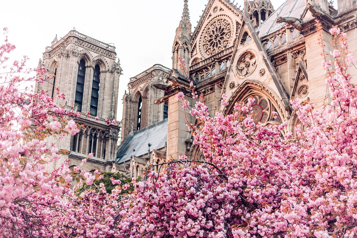 令人期待的巴黎春天,来了吗?