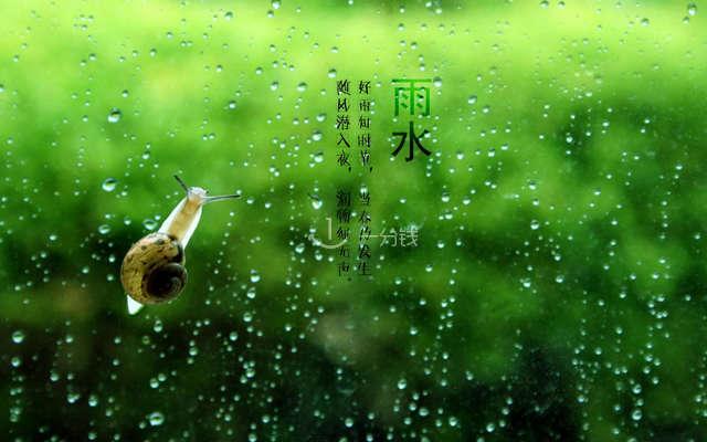 雨水 爱马仕 雨后花园